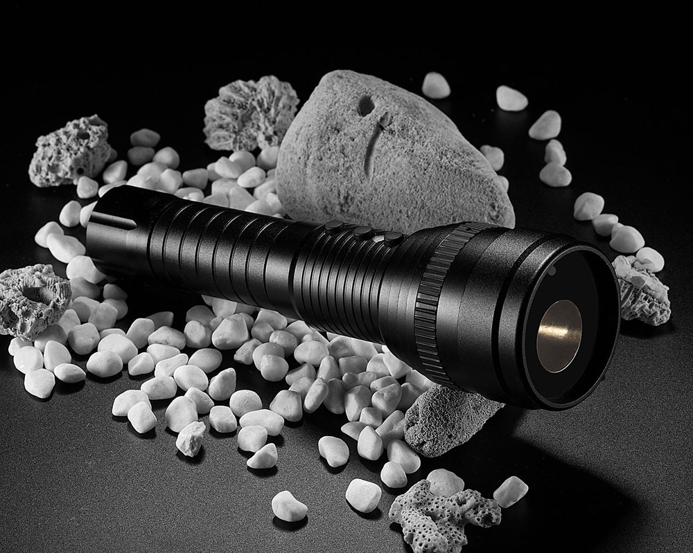 LED torch with camera